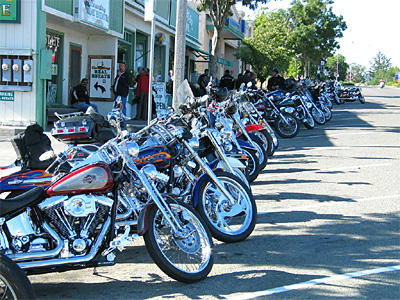 Harley Run bikes in front of Woodrose Cafe in Garberville
