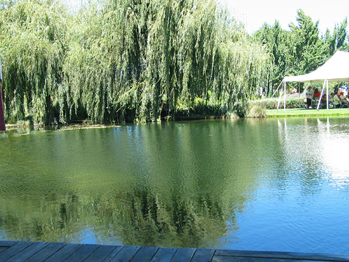 Pond at the Solar Living Center in Hopland