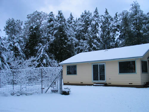 snow in march 2006